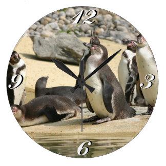 Humboldt Penguins, Clock