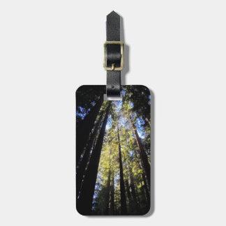 Humboldt Redwoods State Park Bag Tag