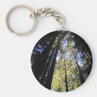 Humboldt Redwoods State Park Basic Round Button Keychain