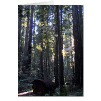 Humboldt Redwoods State Park Greeting Card