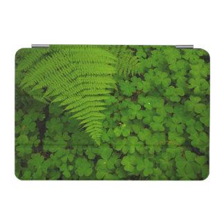 Humboldt Redwoods State Park iPad Mini Cover