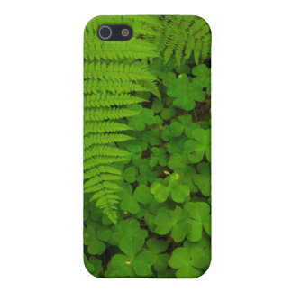 Humboldt Redwoods State Park iPhone 5/5S Cases