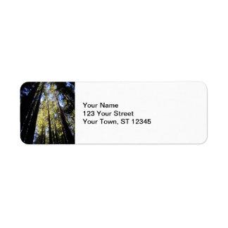 Humboldt Redwoods State Park Return Address Labels