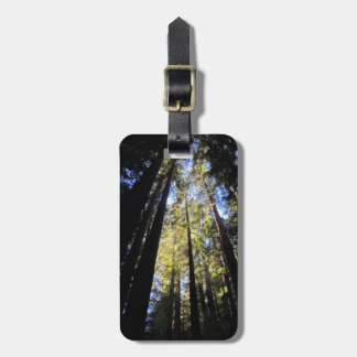 Humboldt Redwoods State Park Tag For Bags