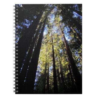 Humboldt Redwoods State Park Spiral Notebook