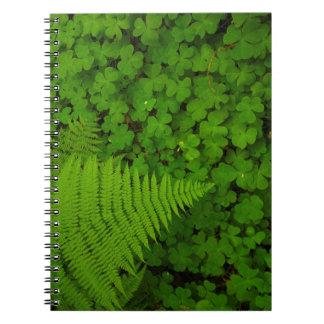 Humboldt Redwoods State Park Spiral Note Book