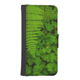 Humboldt Redwoods State Park Phone Wallet Cases