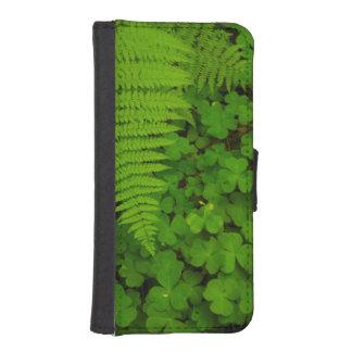 Humboldt Redwoods State Park Phone Wallet Cases