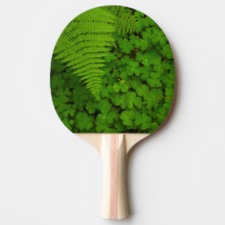 Humboldt Redwoods State Park Ping-Pong Paddle