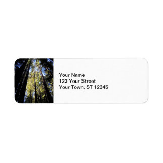 Humboldt Redwoods State Park Return Address Label