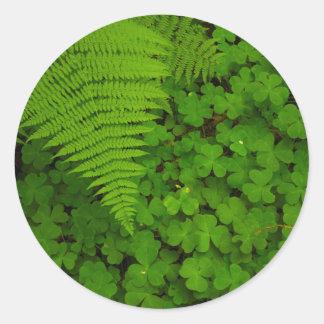 Humboldt Redwoods State Park Round Sticker