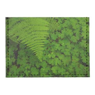 Humboldt Redwoods State Park Tyvek® Card Case Wallet