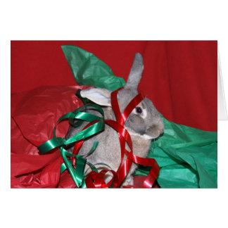Humbug Christmas bunny Card