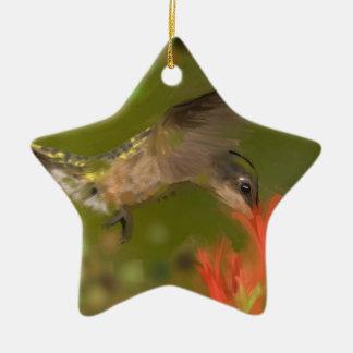hummer drinking ceramic star ornament