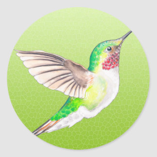 Hummer Lime Classic Round Sticker