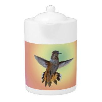 HUMMIMNGBIRD