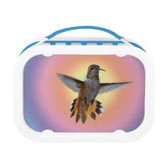 HUMMIMNGBIRD LUNCH BOX