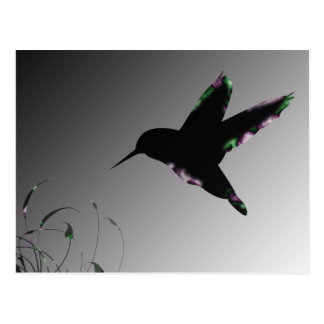 Humming Bird Art Deco Postcard