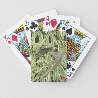 humming bird bicycle playing cards