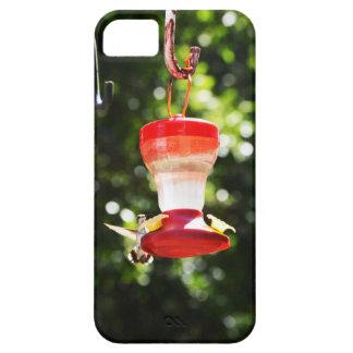 Humming bird iPhone 5 case