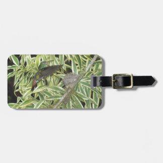 humming bird luggage tag