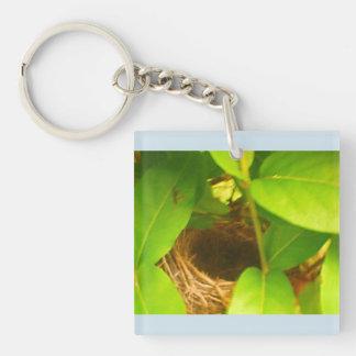 Humming Bird Nest Blue Acrylic Keychain