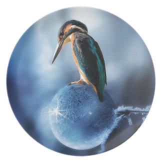 Humming Bird on Frozen Soap Bubble Macro Shot Plate