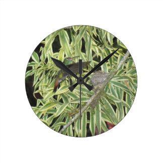 humming bird round clock