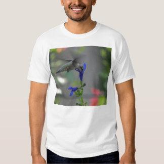 Humming Bird salvia sapphire blue shirt 2