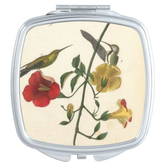 Humming Bird - Square Compact Mirror