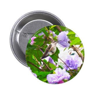 Hummingbird 2 Button