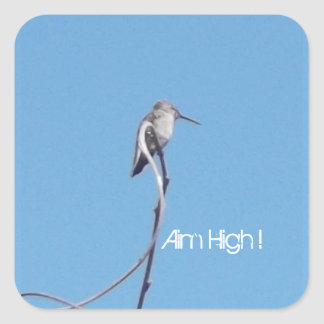 Hummingbird Aim High! Sticker !