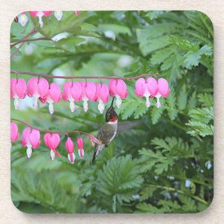 Hummingbird and Bleeding Hearts Coaster
