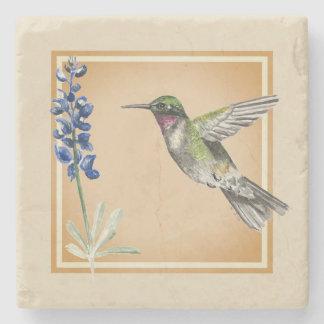Hummingbird and Bluebonnet on Neutral Background Stone Coaster