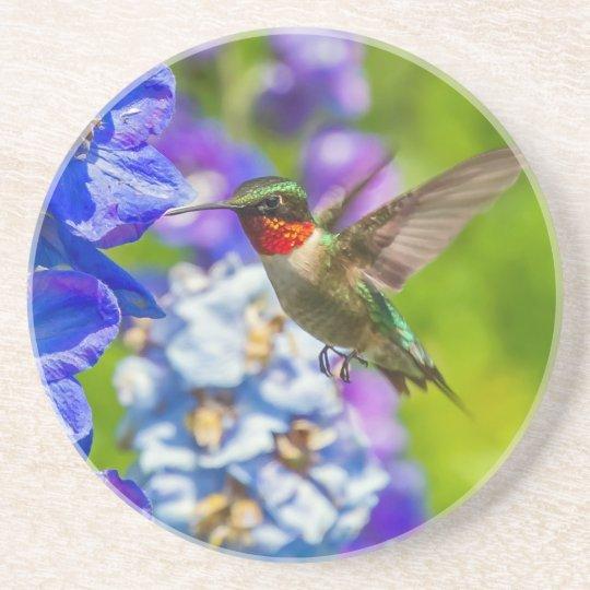 Hummingbird And Delphinium Coaster