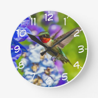 Hummingbird And Delphinium Round Clock