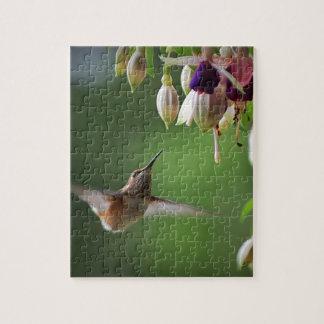 Hummingbird and Fushia Plant Jigsaw Puzzle