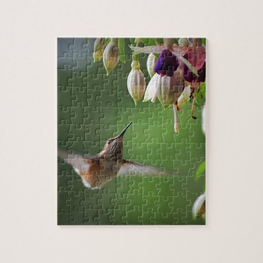 Hummingbird and Fushia Plant Jigsaw Puzzle
