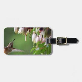 Hummingbird and Fushia Plant Luggage Tag