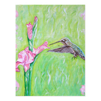 Hummingbird and Gladioli Postcard