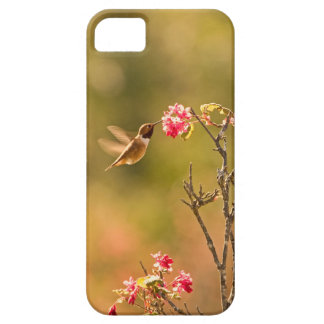 Hummingbird and Pink Flowers Case For The iPhone 5