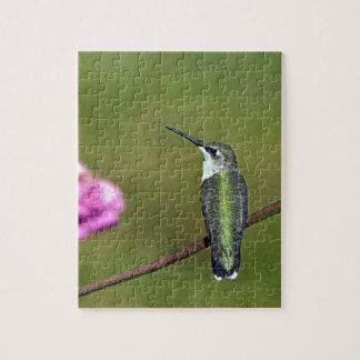 Hummingbird and Zinnia Jigsaw Puzzle