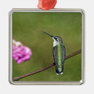 Hummingbird and Zinnia Silver-Colored Square Ornament