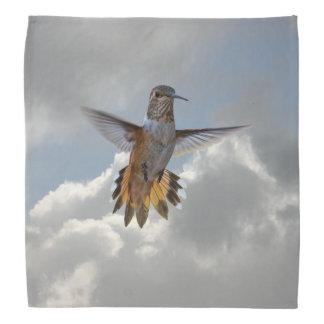 HUMMINGBIRD BANDANA