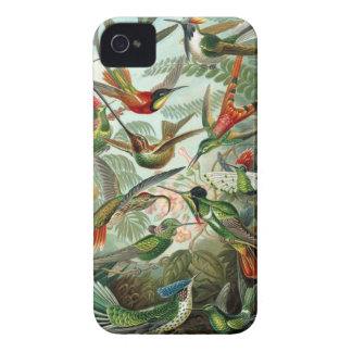 Hummingbird Barely There iPhone 4 Case-Mate iPhone 4 Case