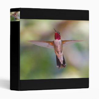 hummingbird binder