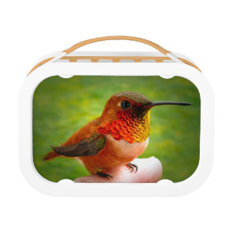HUMMINGBIRD BINGO BOX/ LUNCH BOX