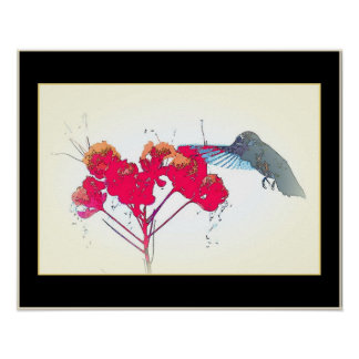 Hummingbird Bird Animal Wildlife Floral Poster