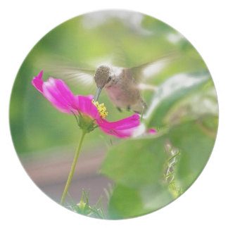 Hummingbird Bird Floral Animal Wildlife Flower Plate
