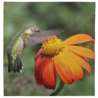 Hummingbird Bird Floral Animal Wildlife Flower Printed Napkin